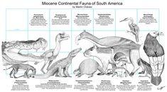 Miocene Fauna of South America by PaleoAeolos.deviantart.com on @DeviantArt