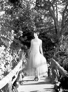 ***     Charm Yolan Cris gowns     ***     Martha Stewart Weddings     ***     ***     ***     ***    ***    ***     ***    *...