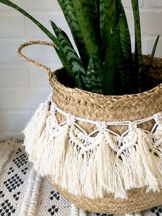 etsy seagrass fringe plant pot basket Balcony – home accessories Macrame Design, Macrame Art, Macrame Projects, Home Decor Baskets, Basket Decoration, Cortina Boho, Plant Basket, Bamboo Basket, Do It Yourself Inspiration