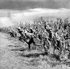 romanian soldiers fighting world war two ww2 romania