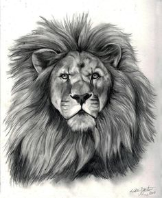 Check out theleonofthetribeofjudah on ReverbNation - #1 in Aliquippa in Christian - thanks from another #1 - good message in good music - almost ambient
