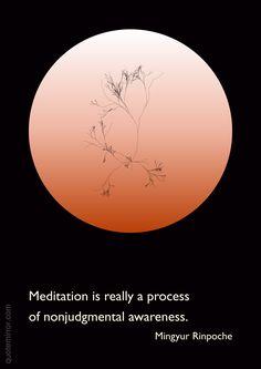 Meditation is really a process of nonjudgmental awareness.  –Mingyur Rinpoche #awareness #meditation http://quotemirror.com/s/1yudj
