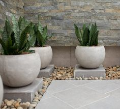 Cement-look tiles and stone-look cladding, with lush planting for an eclectic patio. #HomeDesign #Patioliving
