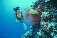 Cabo San Lucas, Mexico, Vacation, Lodging, Cabo, Rental - Casa ...
