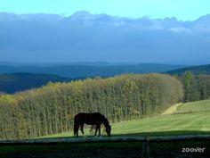 Fotky Buchlov Park**** - Buchlovice