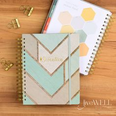 My favorite features of the new 2017 Inkwell Press Planners are the daily habit tracker and the weekly focus!!  I love the Classic layout!!  #lovemyIWP @inkwellpress @babyjsmama528 @julieatexas