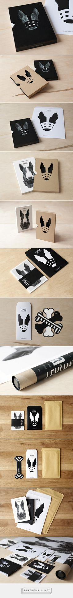 LEVSHA Designer Diary curated by Packaging Diva PD. This is a really cute packaging design exercise PD