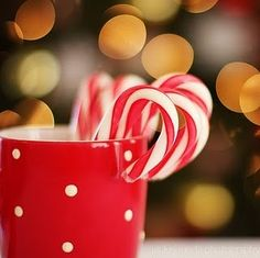 bokeh, candy, candy cane, christmas, christmas tree, crackers