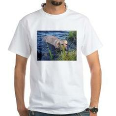 yellow lab in water T-Shirt > Labrador Retriever > Paw Prints
