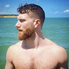 """"""" sexyhairymr: """"I love beard season. This stud has the perfect beard. I love blonde and ginger full beards and shot hair. I popped a solid woody over this stud. Love all the shades of this guys hair. And he's got a smart. Hot Ginger Men, Ginger Beard, Ginger Guys, Sexy Beard, Beard Love, Beard Man, Perfect Beard, Handsome Bearded Men, Hairy Men"""