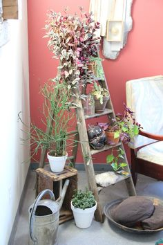 Katrine and Peter's Boston Loft — House Tour: like the use of a ladder for plant stand Patio Plants, House Plants, Garden Plants, Indoor Plants, Garden Totems, Potted Plants, Vintage Home Decor, Diy Home Decor, Vintage Furniture