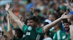 Palmeiras - Campeão brasileiro de 2016 | Mauro Beting