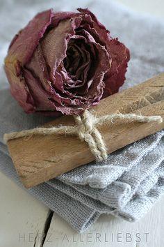 Dried Rose - Ana Rosa  #dried flowers