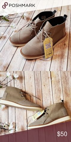 NWT Men's Tom's Shoes Never worn. Toms Shoes Chukka Boots