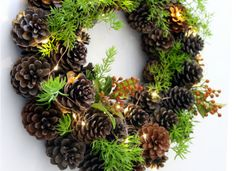 Celebrate the beauty of winter with these pretty winter crafts! Icy blues, silvery whites and frosty pine cones are a delight through the winter months! Christmas Wreaths To Make, Holiday Wreaths, How To Make Wreaths, Christmas Crafts, Christmas Decorations, Holiday Decor, Winter Christmas, Grapevine Christmas, Merry Christmas