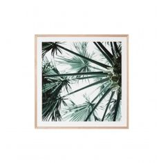 Tropical Garden 2 is custom made in Melbourne from start to finish, and comes framed in Tasmanian Oak. Hang alone or with it's mate, Tropical Garden Framed Prints Online, Framed Art Prints, Tropical Garden, Buy Frames, Prints For Sale, Wall Art, Artwork, Artist, Melbourne