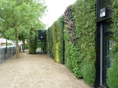 https://flic.kr/p/9tJc6f   Green Wall, Grimsby   Grant Thorold Library, Grimsby, UK by BioTecture