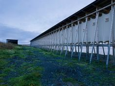 Gallery - Steilneset Memorial / Peter Zumthor and Louise Bourgeois, photographed by Andrew Meredith - 14