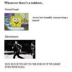 Oh, If there only was a Niall at the end of every rainbow..