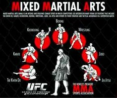 """Mixed Martial Arts #MMA techniques. """"Fastest growing sport in world"""" Mike Mossholder @UFC #SAConf"""