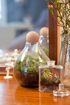 Try them as gifts for the guests! Terrarium favors are a huge hit, and you can bet on terrarium centerpieces being quite the treat for wedding guests to receive. A living gift is a lovely reminder of your union to your family and friends, and as it grows and thrives, they'll think of you. Here's a new one from a client of ours: terrarium-making station at the wedding! It's a fun way to entertain guests, though maybe have a few aprons on hand for those finely dressed or clutzy folks.