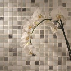 Five Simple (But Important) Things To Remember About Stone Floor Design Zone Sleep On The Floor, Quartz Kitchen Countertops, Open Concept Home, Stone Flooring, Cool House Designs, Floor Design, Cool Rooms, Mosaic Glass, Wall Tiles