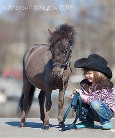 «MINI-PONY.RU» - Миниатюрные лошади,мини- пони.О породе, история, содержание, кормление.