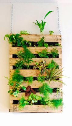 This pallet board is the perfect accompaniment to bringing plants indoors. Tip: try using Boston Ferns or Bamboo Palms to help clean your air naturally.