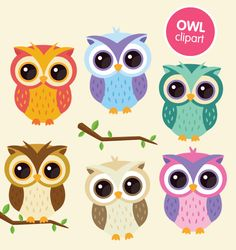 Owl clipart commercial use digital animal clip art by ColorPlanet