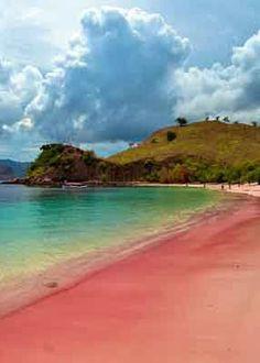 Pulau Komodo, Nusa Tenggara Timur, Indonesia. De playa Rosa Isla de Komodo, East Nusa Tenggara, Indonesia