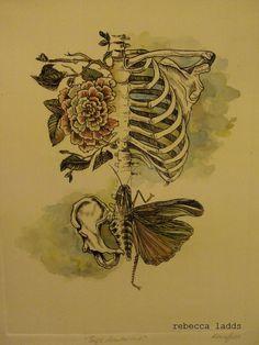 Soft anatomy ~ artist Rebecca Lads