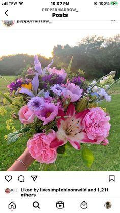 Good Shabbos, My Favorite Color, My Favorite Things, Bed And Breakfast, Flower Arrangements, Colors, Flowers, Plants, Floral Arrangements