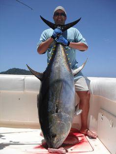 The big Tuna are back.....