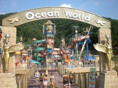 South Korea Ocean World #SouthKorea #vevelicious