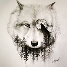 Alpha wolf tattoo design is part of The Best Wolf Tattoos For Men Improb - Wolf and the Moon Wolf Eye Drawing, Cool Wolf Drawings, Animal Drawings, Pencil Drawings, Drawing Art, Drawing Ideas, Drawings Of Wolves, Pencil Tattoo, Moon Drawing