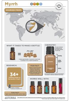 Myrrh essential oil comes from the resin of the myrrh tree which is a relative Essential Oil Safety, Essential Oil Companies, What Are Essential Oils, Essential Oils Guide, Essential Oil Uses, Doterra Essential Oils, Doterra Myrrh, Vetiver Oil, Vetiver Essential Oil