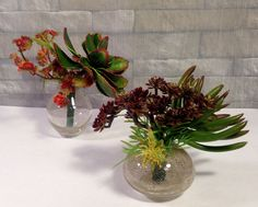 Artificial succulent plant arrangement in Green and Burgundy Color - Set of 2