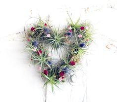 HEART wreath no.1 // small // air plant tillandsia