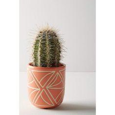 Anthropologie Sage Garden Pot (7.48 CAD) ❤ liked on Polyvore featuring home, outdoors, outdoor decor, peach, garden patio decor, earthenware pot, garden pots, anthropologie and garden decor