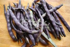 'Royal Burgundy' beans Royalty Free Stock Photo The Colour Of Magic, Image Now, Beans, Royalty Free Stock Photos, Burgundy, Purple, Color, Colour, Wine Red Hair
