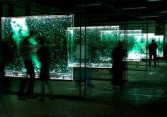 The Blind Astronomer - Berco Wilsenach Light Art Installation, Wine Tasting Room, South African Art, Glass Panels, Stranger Things, Blinds, Contemporary Art, Street Art, Sculpture