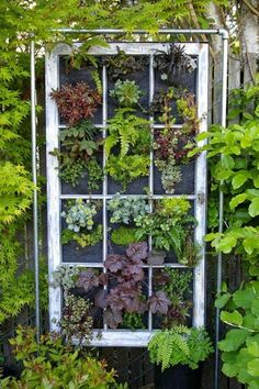 Hanging window garden planter