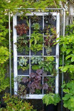 Hanging window garden planter