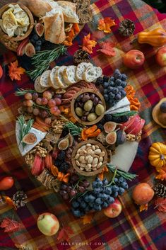 Charcuterie Recipes, Charcuterie Platter, Charcuterie And Cheese Board, Antipasto Platter, Cheese Boards, Fall Harvest Party, Autumn Harvest, Fall Appetizers, Fall Fest