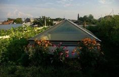 Kater St. Rowhome Boasts Park-Worthy Mature Green Roof - Curbed Philly