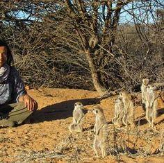 Meerkat holidays: How I got so close to a meerkat family in South Africa's Kalahari Desert Homeland, South Africa, Safari, Deserts, Bucket, African, Holidays, Animals, Vacations