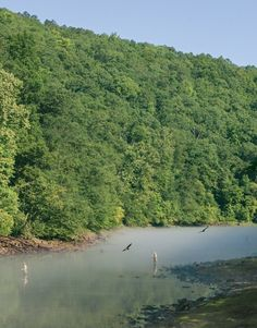 Excursion: Heber Springs - AY Magazine - July 2015 - Arkansas