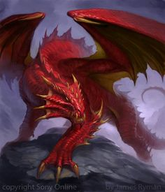 D725 red dragon