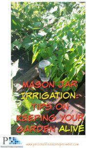 Save money, don't kill your garden!