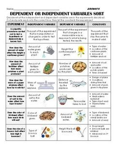 Experiment Variables Notes, Sort & Application: Independent, Dependent- DIGITAL! 7th Grade Science, Stem Science, Elementary Science, Middle School Science, Science Classroom, Teaching Science, Physical Science, Science Education, Science Worksheets